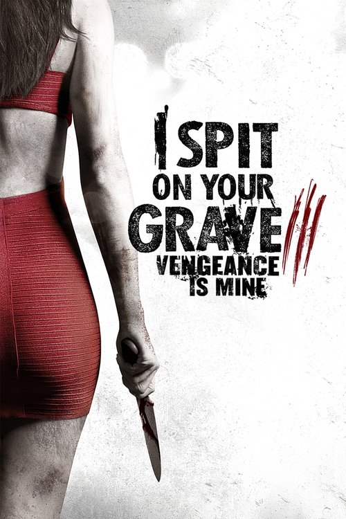 DVD Cover for I Spit on Your Grave 3